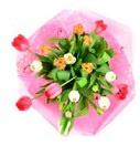 feestelijke bloemen - tulpen gemengd